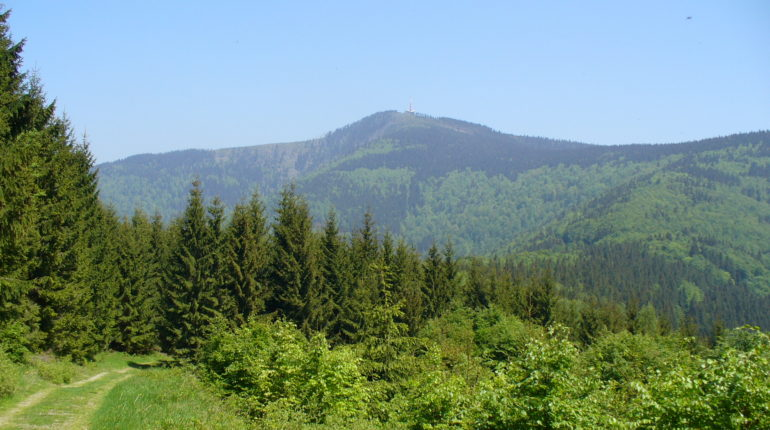 vrchol Lysé hory